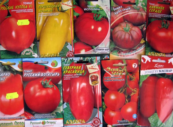 Подготовка семян помидор к посеву